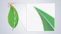 Web grafiği araçları