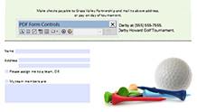 PDF Form özelliği