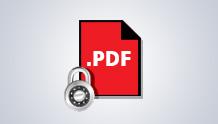 PDF güvenliği ve arşivlemesi